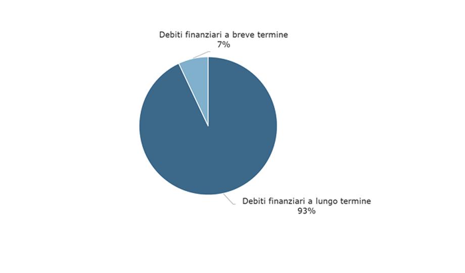 Struttura del debito al 31 dicembre 2019