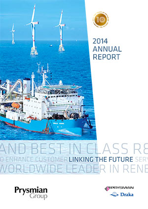 Annual Report 2014 - DELIVERING ON PROMISE
