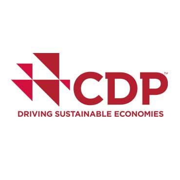 CDP.jpg
