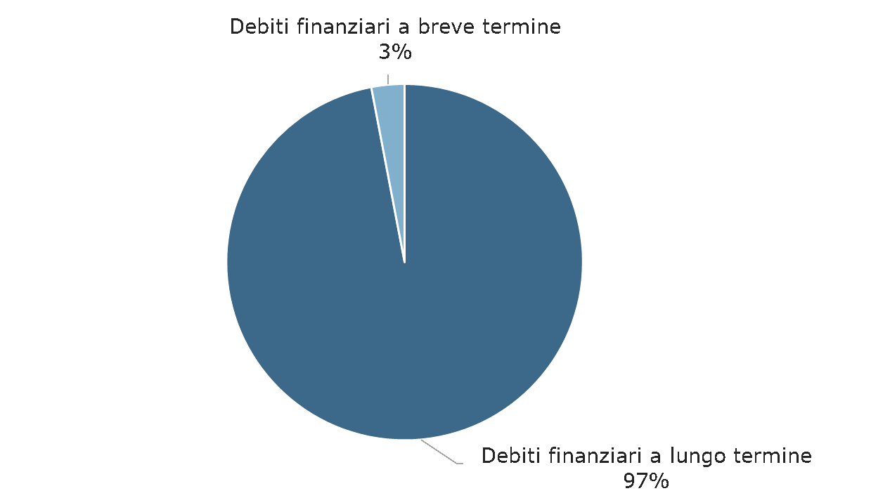 Struttura del debito al 31 dicembre 2018