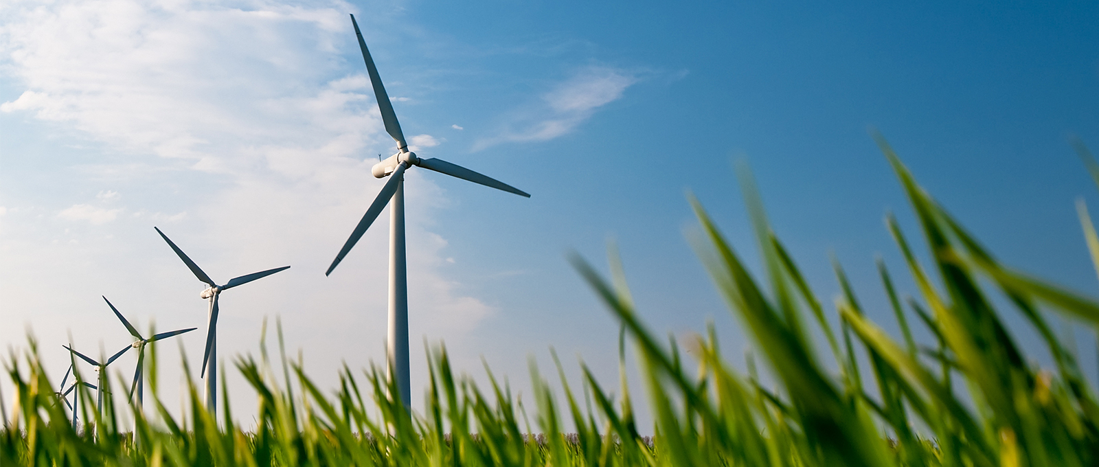 Prysmian supports the renewable energy industry worldwide