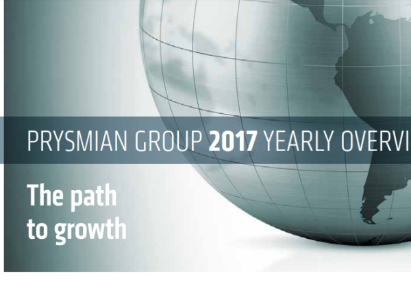 2017 Yearly Overview - THE PATH TO GROWTH