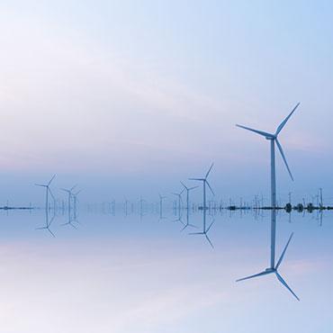 Storie di Sostenibilità