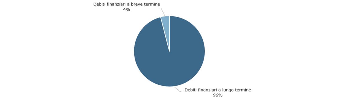 Struttura del debito al 31 dicembre 2020