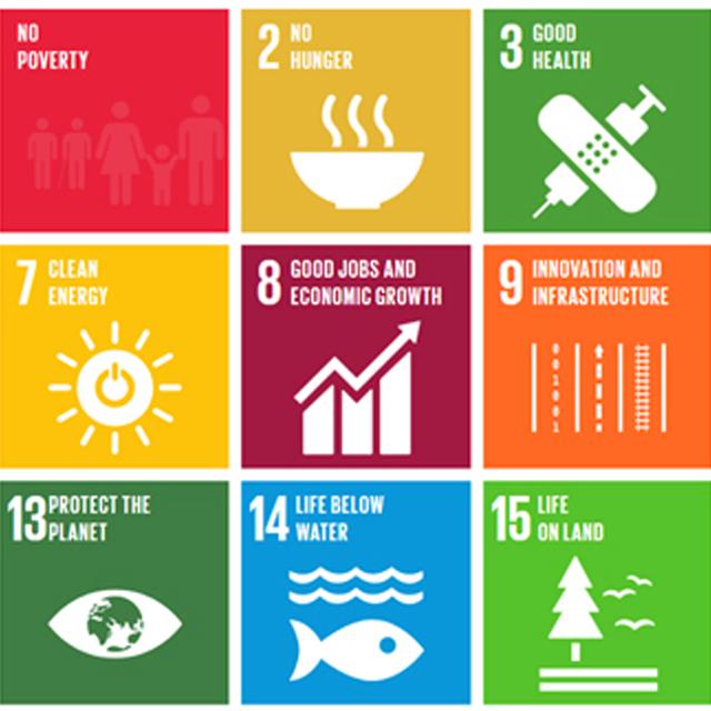 Obiettivi di Sviluppo Sostenibile dell'ONU